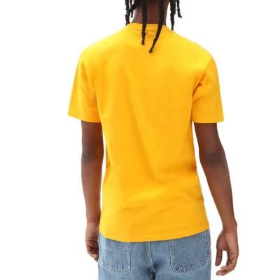 Camiseta Vans Mn Classic Print Box Saffron-Black
