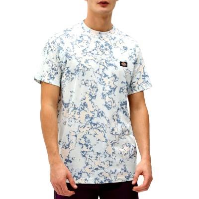 Camiseta Dickies Sunburg tee fog blue