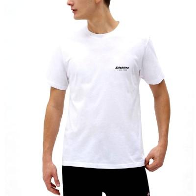 Camiseta Dickies Quamba Box White