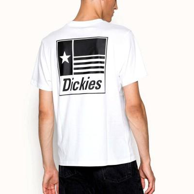 Camiseta Dickies Taylor Tee Ss White