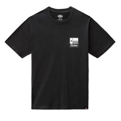 Camiseta Dickies Taylor Tee Ss Black