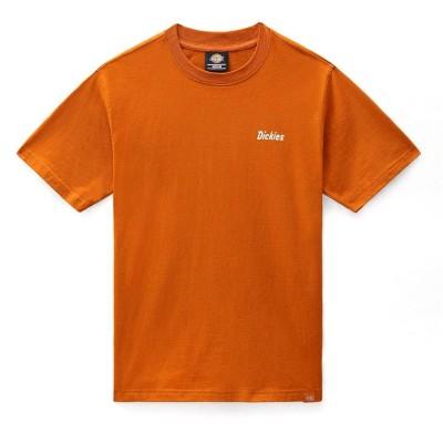 Camiseta Dickies Bettles Tee Ss Pumpkin Spice