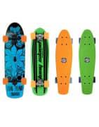 Cruisers Longboard